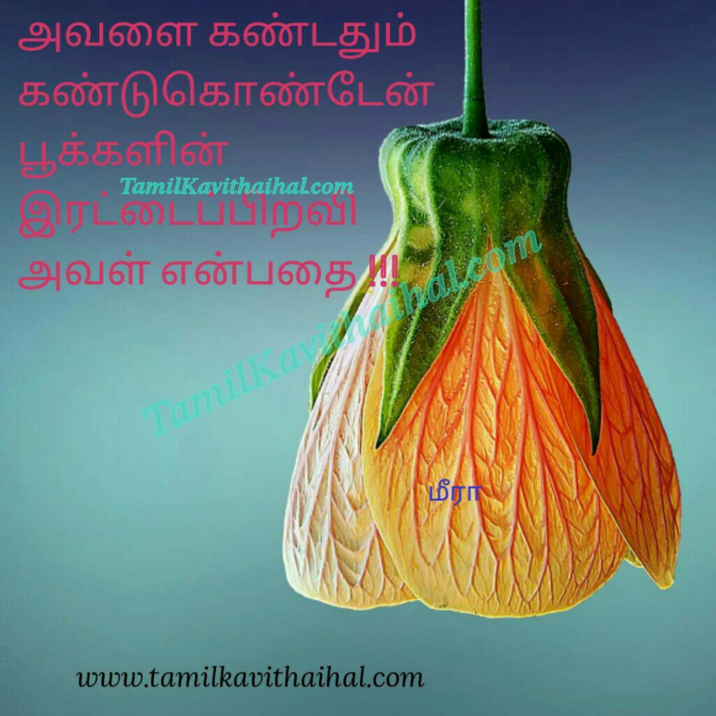 Pookal rettai piravai nee aval parvai parthathum meera tamil kavithai lovable quotes in tamil beautiful tamil lines