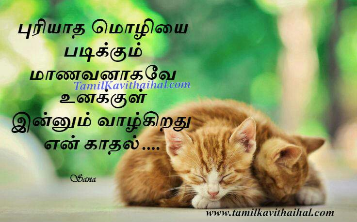 Puryatha moli padikum manavan en kadhal sana cute tamil lines latest kavithaigal 201 best love poems images download