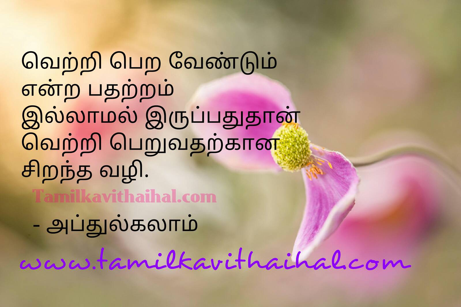 Quotes for positive success in tamil abj abdhul kalam saying thathuvam vetri pon mozhkal image