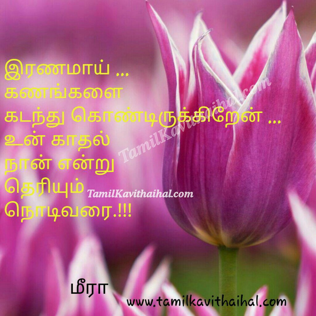 Ranam kadhal kanam kadanthu neram theryum varai meera tamil poems for facebook profile