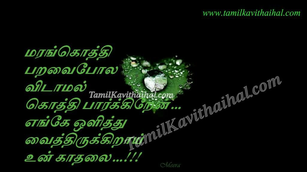 Sad kadhal kavithai marankothi paravai olithu vaithirukirai kadhalai tamil love poems meera images download