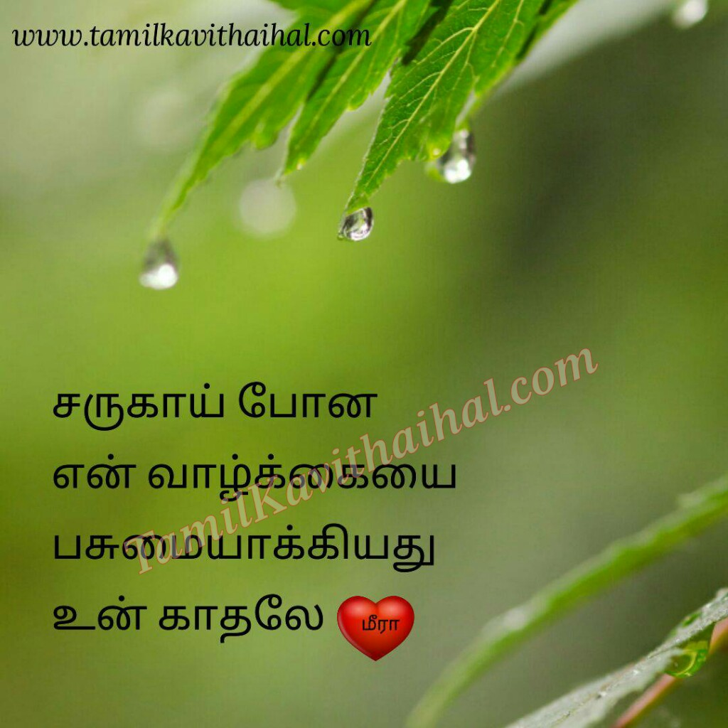 Sarugai pona valkai pasumai un kadhal meera kadhal kavithaigal in tamil love quotes and poems