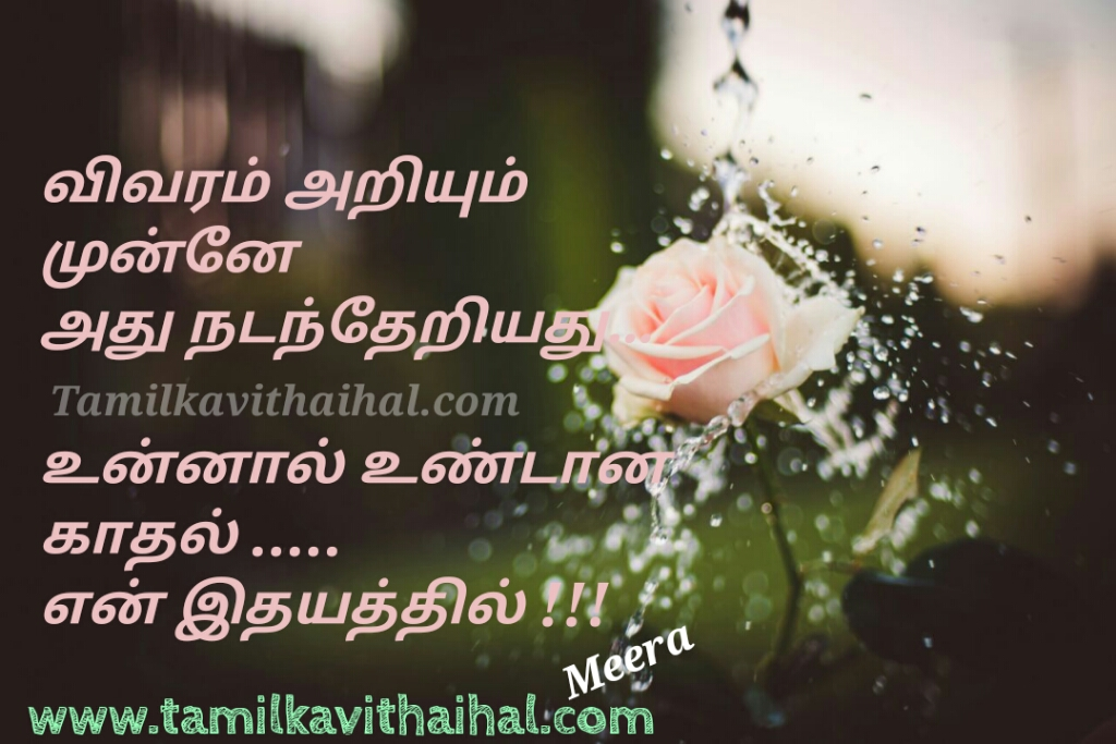 Simple word to express love best tamil kadhal poem unnal undana kadhal en idhayam love meera pictures download