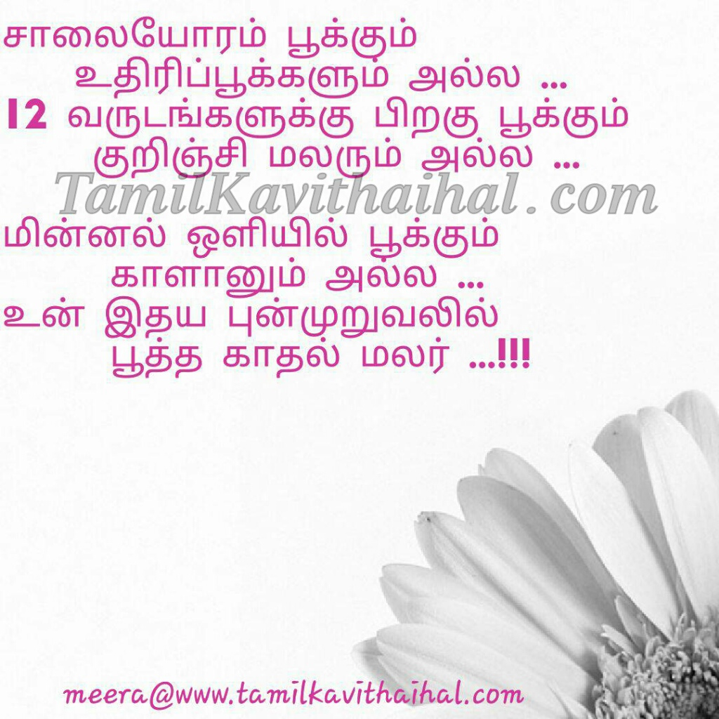 Tamil kadhal kavithai malar pookal kurinchi love poems minnal idhayam punnagai meera HD wallpaper download