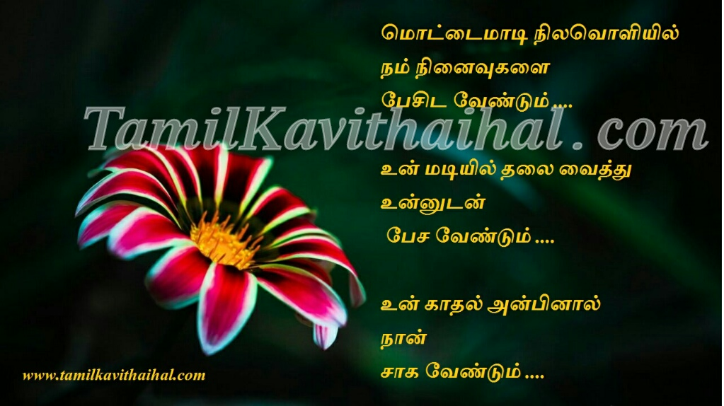 Tamil kadhal kavithai meera husband and wife kavithaigal sentiment last wish aasai viruppam love proposal 1