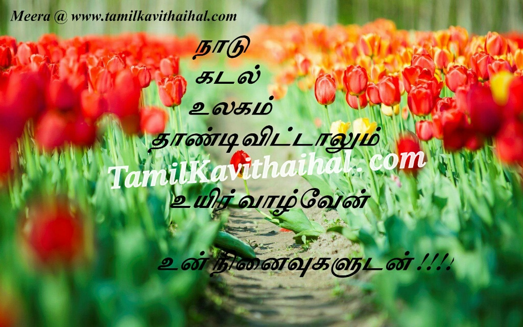 Tamil kavithai about life kadhal love kadal naadu ninaivugal meera images download