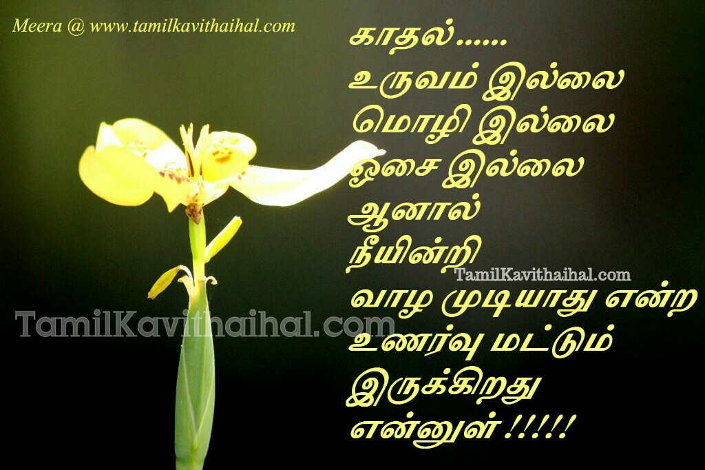 Tamil kavithai images love poems kadhal osai unarvu moli mozhi meera images for whatsapp dp status