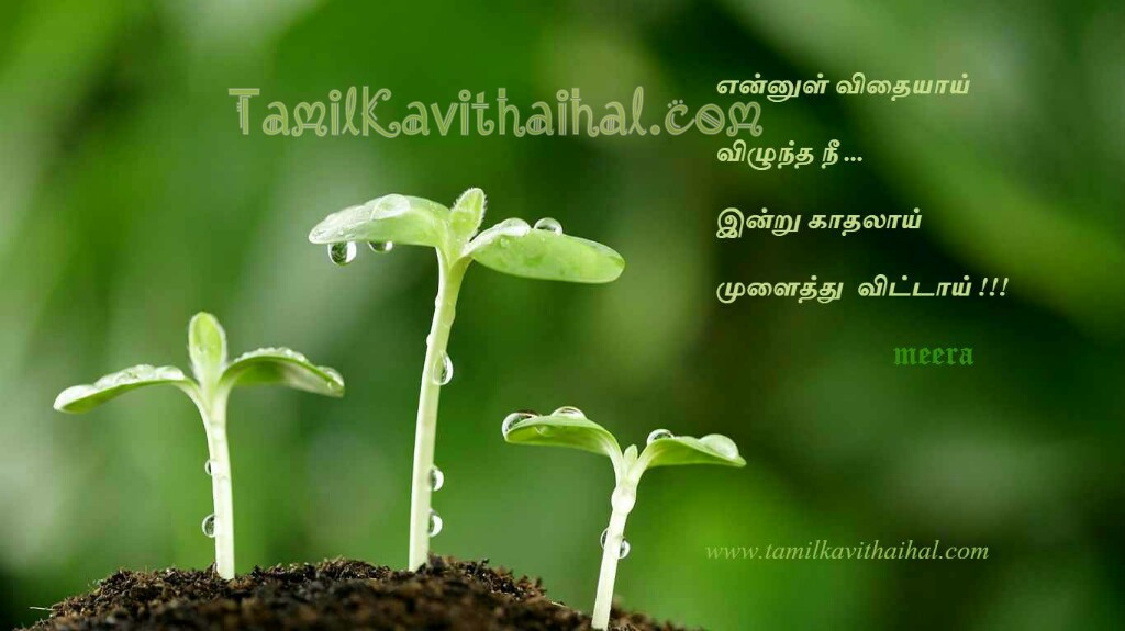 Tamil quotes kadhal kavithai love sad feel