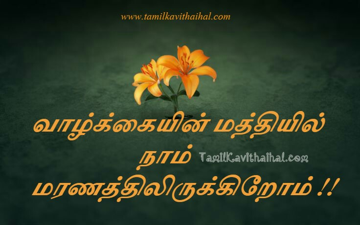Tamil whatsapp dp images valkai life maranam images download