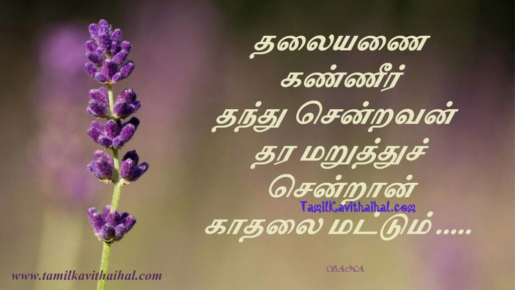 Thaliyanai kanneer thara maranthu sendra kadhalai girl feel kavithai husband and wife pirivu sad quotes by sana