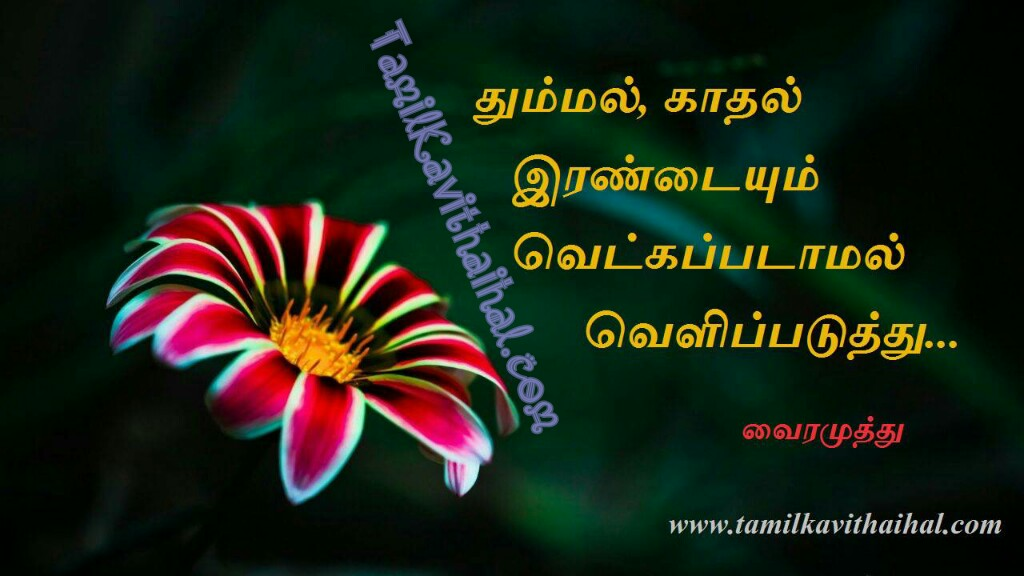 Vairamuthu kadhal kavithai lyrics thummal kadhal vetkam valkai thathuvam tamil quotes images for facebook whatsapp