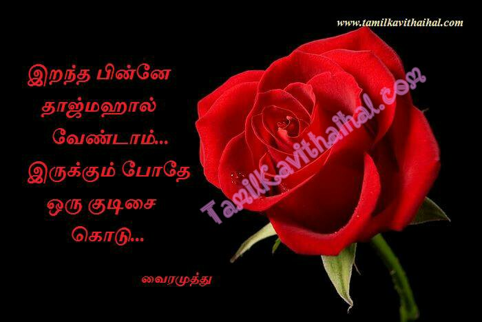 Vairamuthu kavithaigal rose tajmahal kudisai kadhal maranam irappu tamil quotes images download