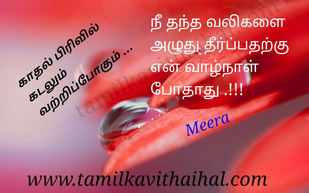 Very painful sad kanner kavithai nee thandha valikal vaalnaal ranam pain meera poem pic wallpapper dp