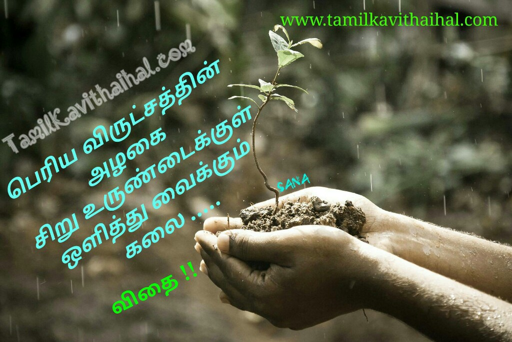 Vidhai kavithai in tamil about seed
