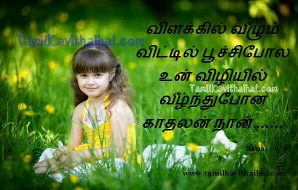 Vilaku vizhi vili poochi naan un kadhalil kanneer kavithai sogam boy feel love failure tamil poems images download